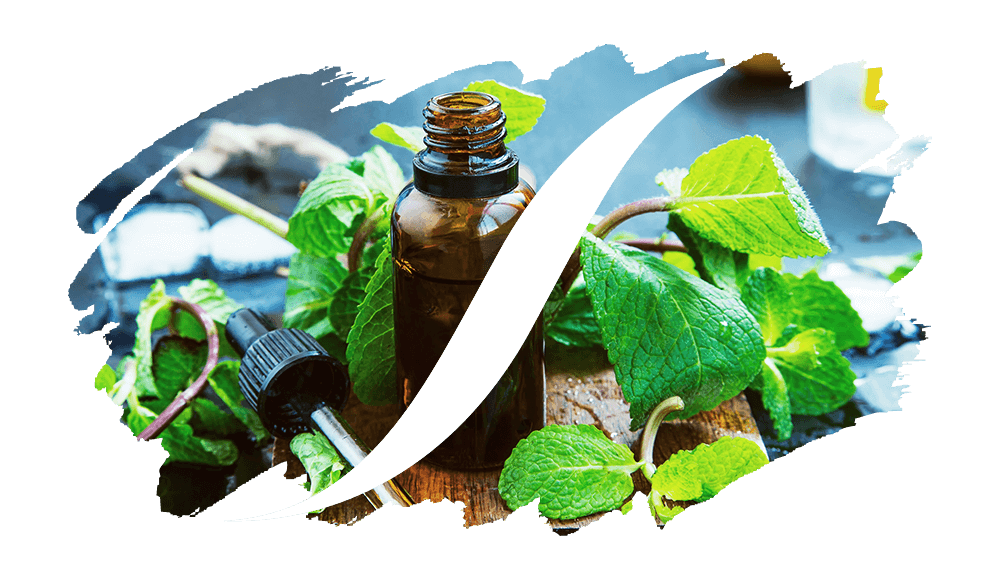 Aromatisch online kaufen | L'arise