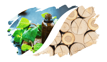 Aromatisch-Holzig