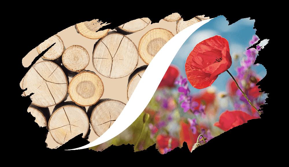 L'ARISÉ Eau de Parfum für den Herren | Holzig-Blumig