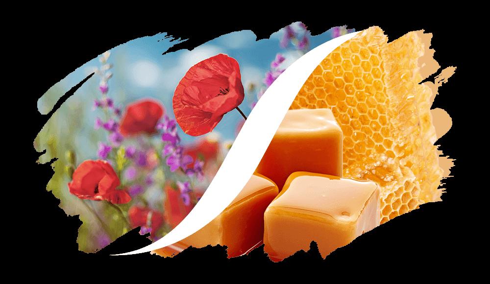 Blumig-Süß online kaufen | L'arise