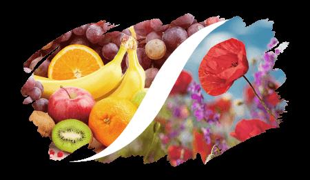 Fruchtig-Blumig