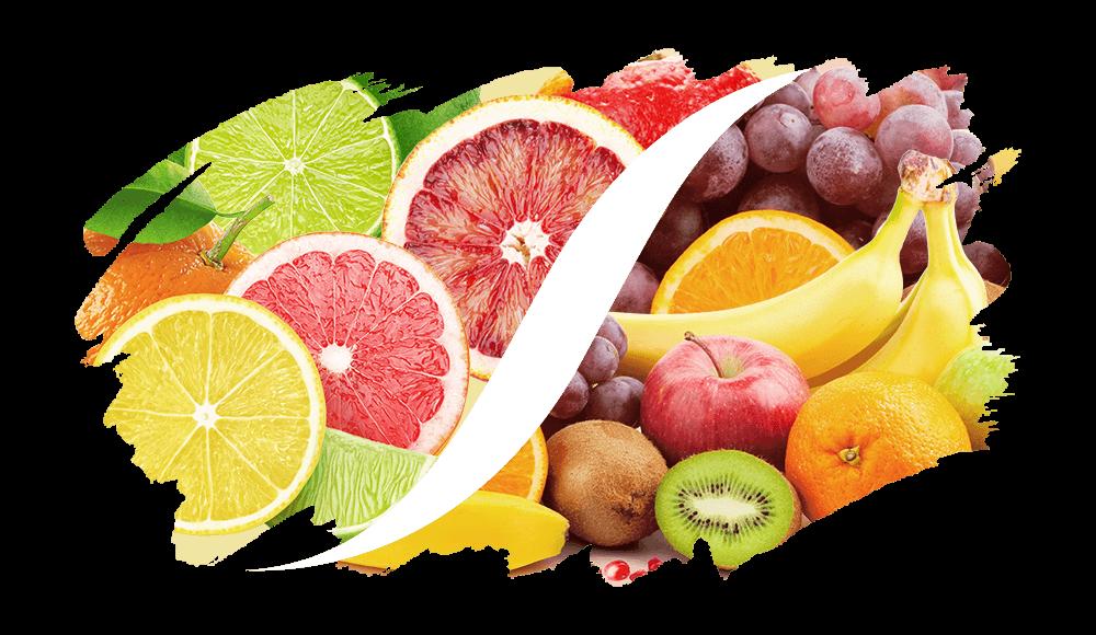 Zitrus-Fruchtig online kaufen | L'ARISÉ
