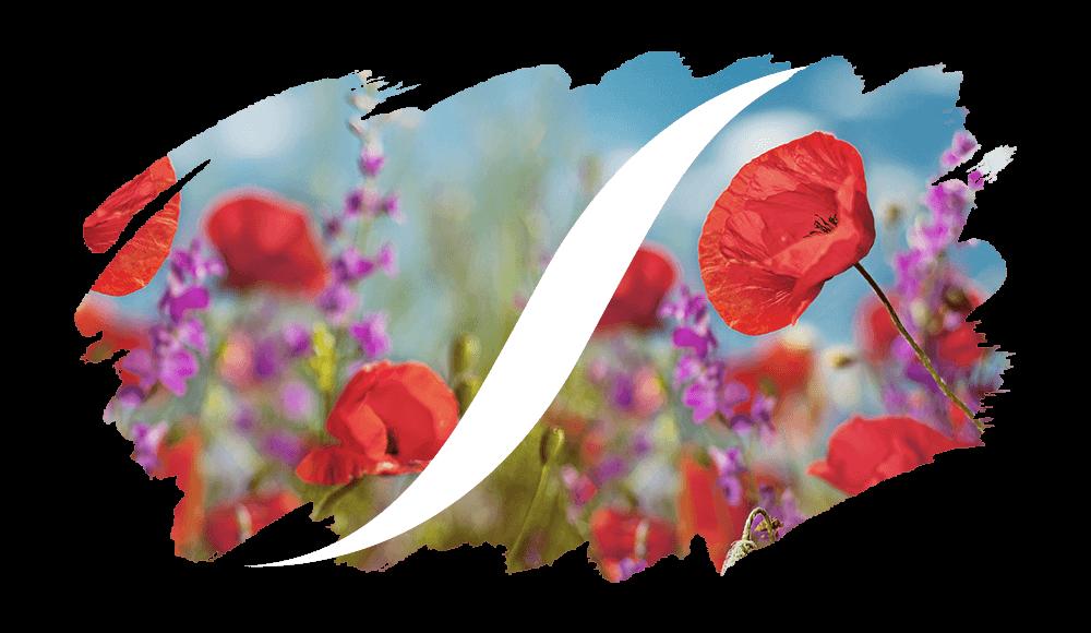 Profumi Equivalenti Floreali-Floreali di L'ARISÉ