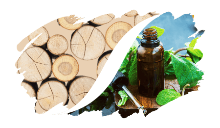 Legnoso-Aromatico